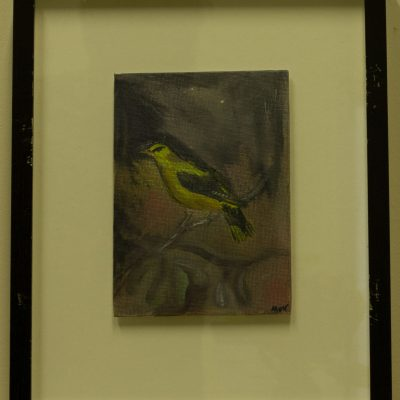 Framed and Glazed Green Finch