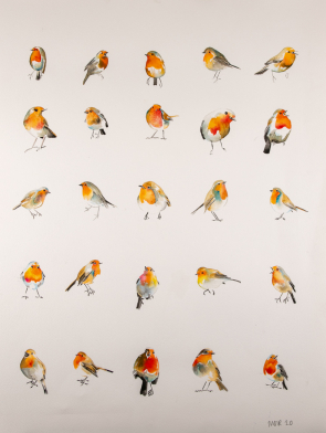 25-ROBINS-ORIGINAL