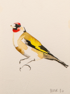 GOLDFINCH-II